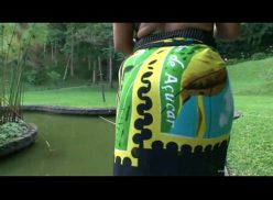 Milf brasileira transando no campo